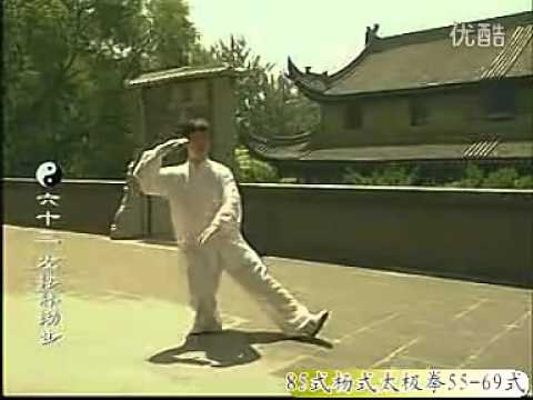 tai chi 108 forms tutorial